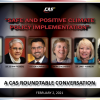 Safe & Positive Climate Policy Implementation